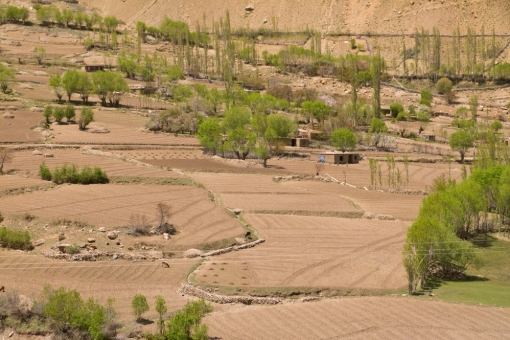 Afghan fields in the Pyanj river valley
