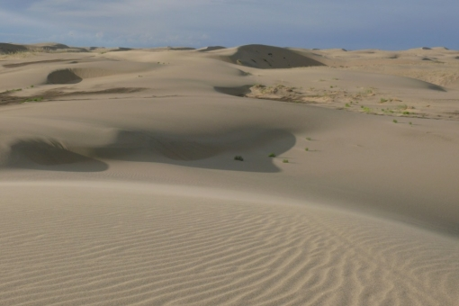 The famous sands of Mongol-Els