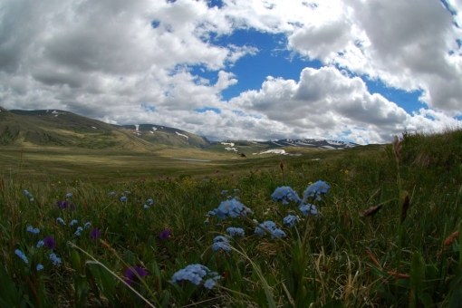 the Ukok Plateau - perfect view on the Warm spring pass